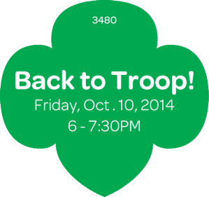 backToTroop201415