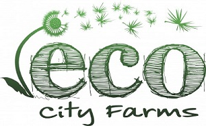 ECO-city-farms-logo-medium