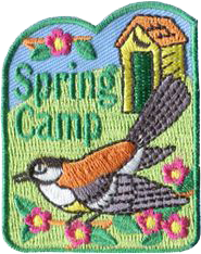 springCamp