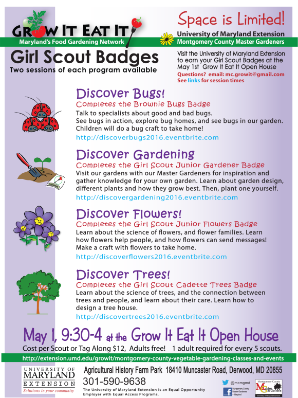 On your own naturalists badges at grow it eat it open house may 1 growiteatit05012016 quick recap what girl scout naturalist badges solutioingenieria Gallery