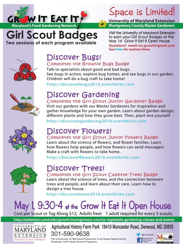 On your own naturalists badges at grow it eat it open house may 1 growiteatit05012016 quick recap what girl scout naturalist badges solutioingenieria Images