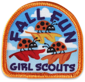 fallfunladybuggirlscoutpatch