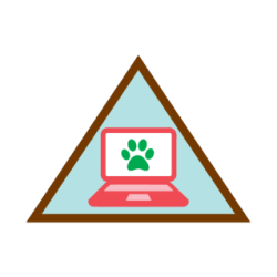 Brownie Cybersecurity 2 badge